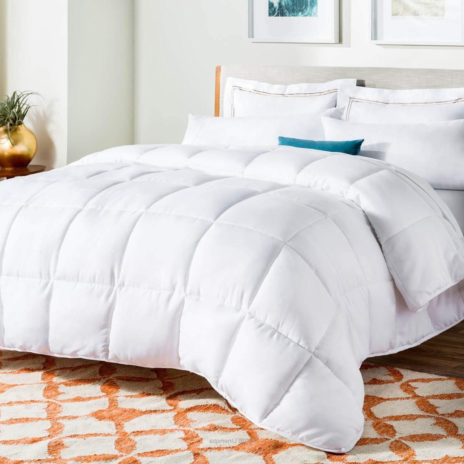 Alternative Quilted Comforter - Queen - Plush Microfiber Fil