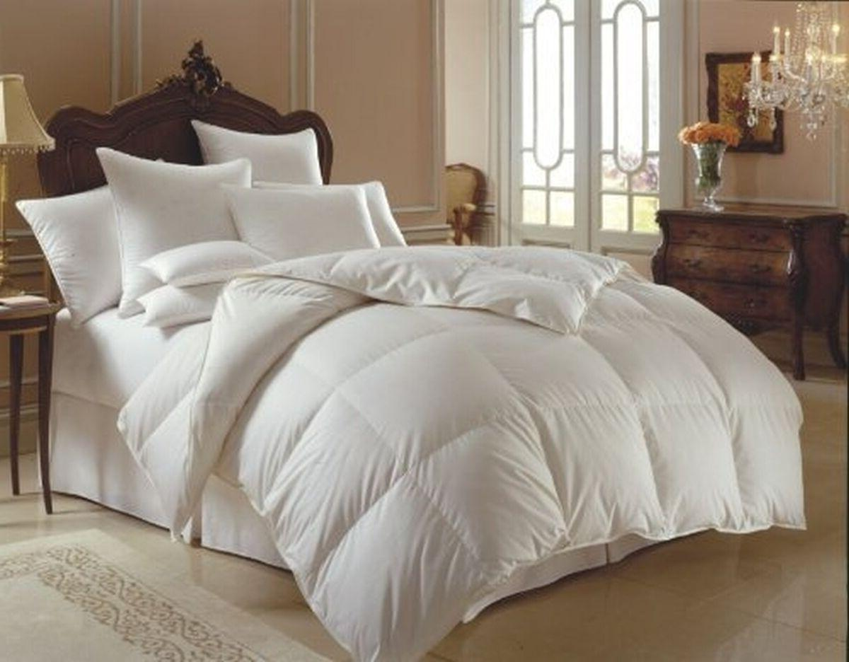 percent 100 cotton goose down double filled